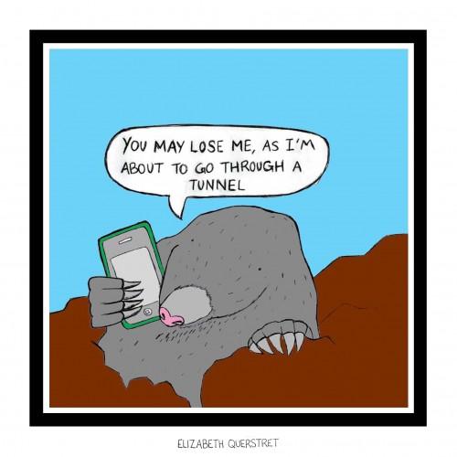 Mole Call copy